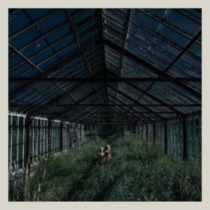 foxing-dealer-album